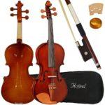 Violino hofma 4