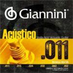 enc giannini acustico 011